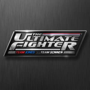 The Ultimate Fighter Finale 17