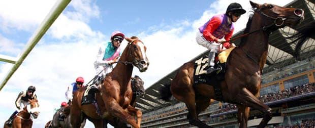 best college picks horse betting websites