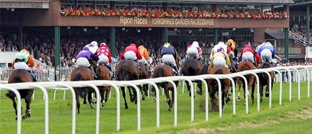 It's an excellent meeting at Ripon on Saturday.