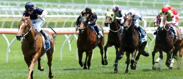 Extreme Choice is a worthy favourite for the Golden Slipper.
