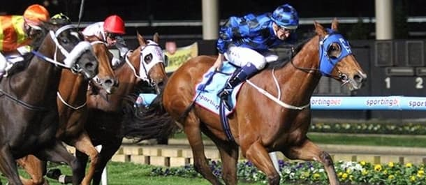 Buffering won the 2013 edition of the Manikato Stakes.