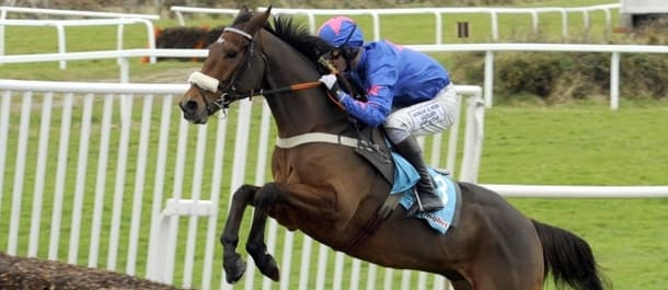 Cue Card returns for another shot at Gold Cup glory.