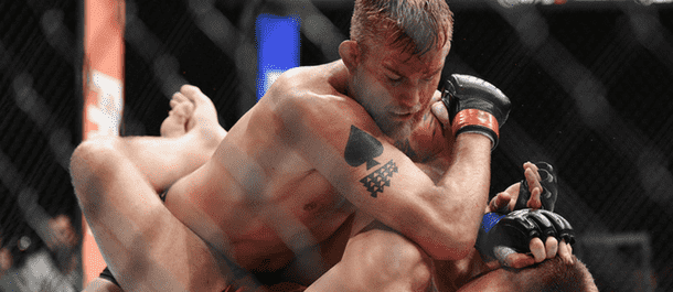 Alexander Gustafsson ground and pound
