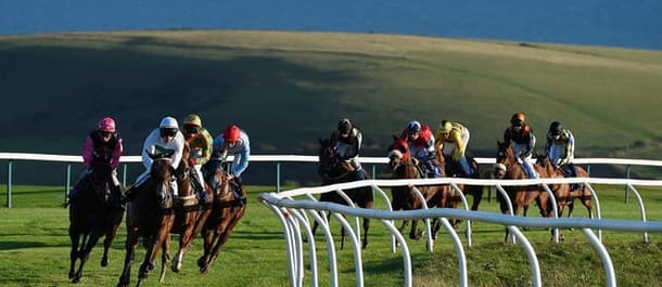 Tuesday's tips feature a well-fancied runner at Brighton.