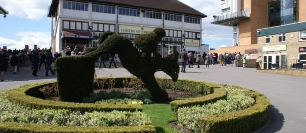 Tuesday's racing includes action from Fontwell racecourse.