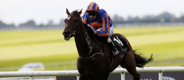 A P O'Brien has a strong chance with Order of St George in the Gold Cup.