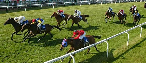 Free Forum has a strong chance at Brighton racecourse on Friday.