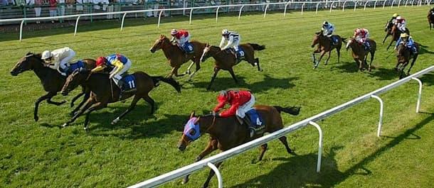 Free horse betting tips forum blotching bitcoins