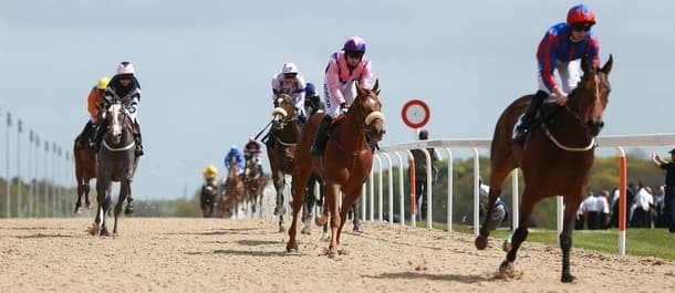 Newcastle's all-weather meeting features in Friday's racing preview.