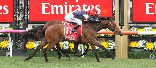 Almandin has a strong chance of taking a second Melbourne Cup in a row.
