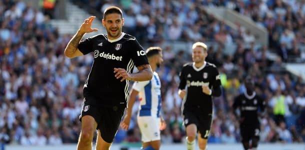 Mitrovic has led the line for Fulham in the Premier League this season.