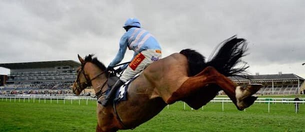 Western Warhorse won the Arkle Chase in 2014