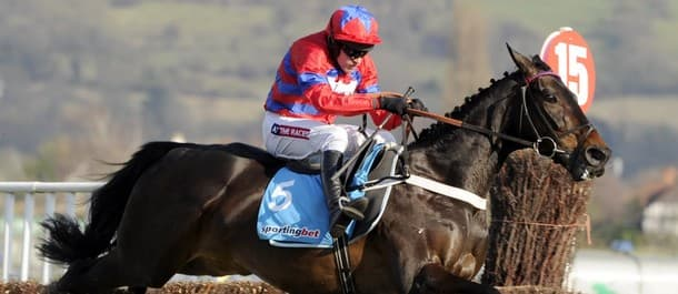Sprinter Sacre had unfulfilled potential