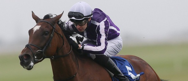 Can Magical pull off a winner for O'Brien?