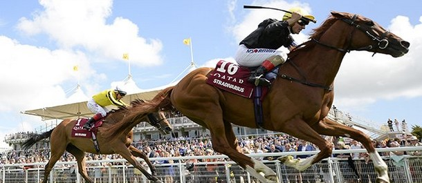 Stradivarius is going for his second Ascot Gold Cup