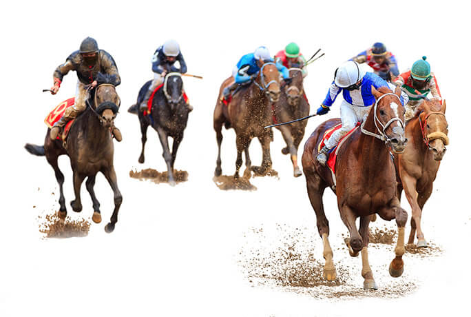 The Best Horse Racing Betting Sites UK